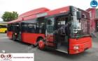 MAN A 20 CNG/Erdgas/530/Lions City/315/2x vorhanden bus