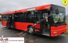 MAN A 20 / NÜ 313 / A 21 / Lions City / 530 / 315 bus