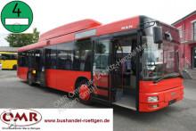 MAN city bus