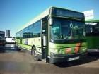 autocar transporte escolar Iveco usado