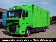camion van à chevaux DAF