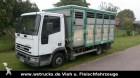 camión remolque para caballos Iveco usado