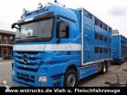 camion van per trasporto di cavalli Mercedes usato
