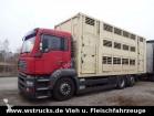 camion van à chevaux MAN occasion