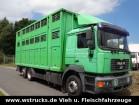 gebrauchter MAN Viehtransporter