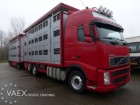 camion transport animale Volvo second-hand