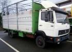 otros camiones nc usado