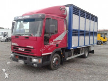 camion trasporto bestiame Iveco usato