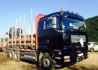 camion MAN TGA