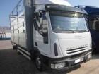 camión Iveco Eurocargo ML 80 EL 15