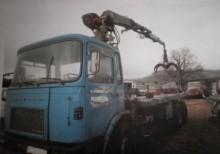 camion transport buşteni Saviem second-hand