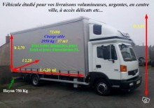 camion Nissan Atleon 80.19