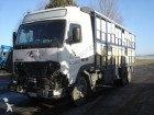 camion trasporto bovini Volvo incidentato