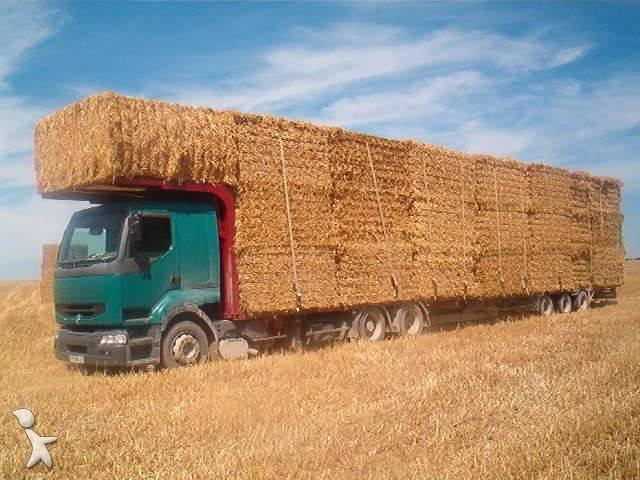 Se necesita: maquinista para empresa de servicios agrarios con experiencia mecánica y carnet de trailer.   166581-photo-camion
