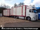 camion van per trasporto di cavalli Volvo usato