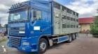 camion trasporto suini DAF usato