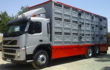 camión para ganado porcino Volvo usado