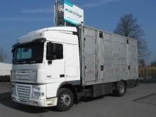 camion van per trasporto di cavalli DAF usato
