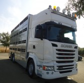 camion trasporto suini Scania usato