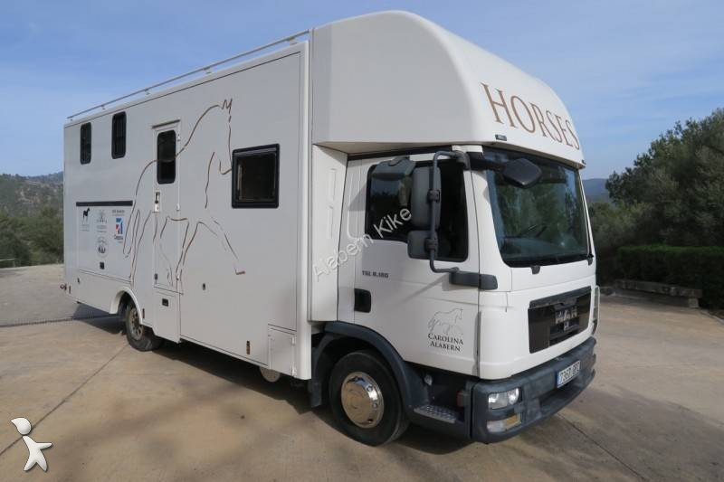 camion man van chevaux tgl 4x2 gazoil euro 5 occasion n 1595886. Black Bedroom Furniture Sets. Home Design Ideas