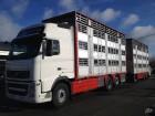 camion remorque bétaillère Volvo occasion