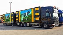 autotreno trasporto bovini Scania usato