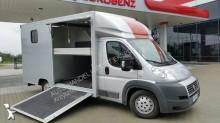 used Fiat horse van