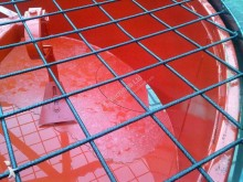 betoniera nc Mischer , mit Zapfwellenantrieb 600l nuova - n°2079219 - Foto 6