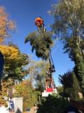 Bilder ansehen K.A. Biojack 400 Combi Kran Fällgreifer Forstmaschinen