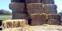 Vedeţi fotografiile Unelte de prelucrat solul Fiat HESSTON 470