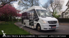 Mercedes Sprinter 516 CNG, 43 Euro 5 EEV,BlueEfficiency bus