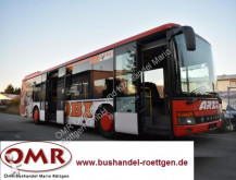 autobús Setra S 315 NF / UL / 530 / 4416
