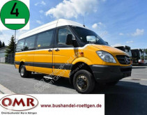 Mercedes 515 CDI / 4x4 / Allrad / 516 / 519 / Spinter