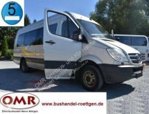 Mercedes 516 CDI, Sprinter 20 Sitze, 519