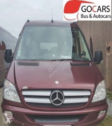 Voir les photos Autobus Mercedes 519 CDI XXL SPICA VIP