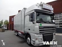 camion DAF XF105-460 2Deks Veewagen