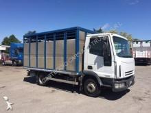 camion trasporto bovini usato