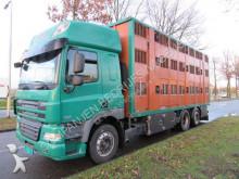 DAF cattle truck