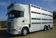 Camión para ganado porcino Scania R 490