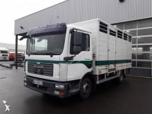 MAN cattle truck