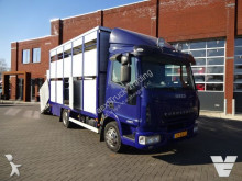 Iveco cattle truck