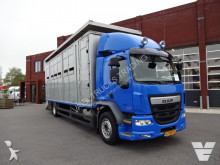 DAF cattle truck