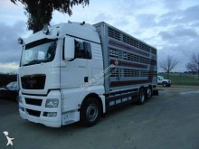 Camión para ganado MAN TGX 26.480