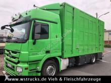 Mercedes Pferdetransporter