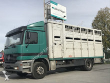 Mercedes horse truck