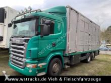 camião transporte de cavalos Scania