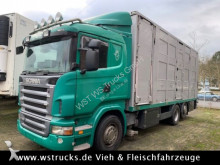 camion van per trasporto di cavalli Scania