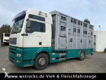 MAN livestock truck