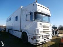 ciężarówka do transportu koni używana