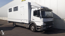 camion Mercedes Atego 1024